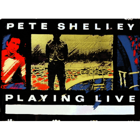 Pete Shelley live Poster